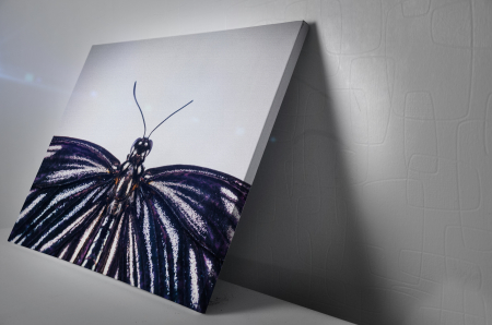 Tablou Canvas - Butterfly [2]