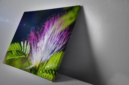 Tablou Canvas - Exotic Flower [2]