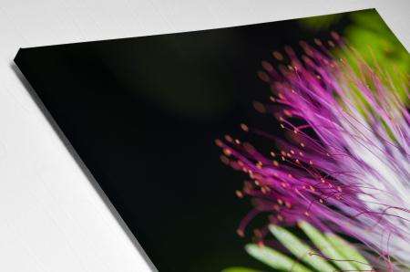 Tablou Canvas - Exotic Flower [3]