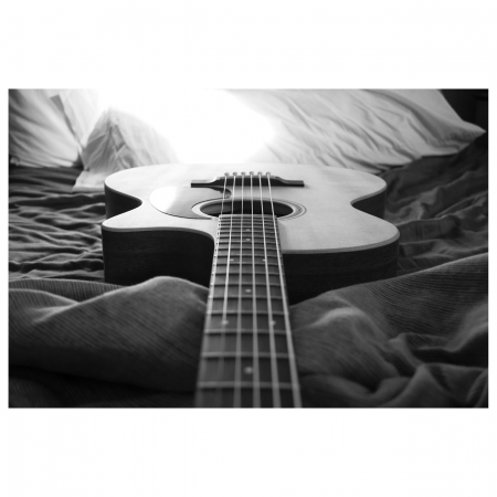 Tablou Canvas - Guitar [0]