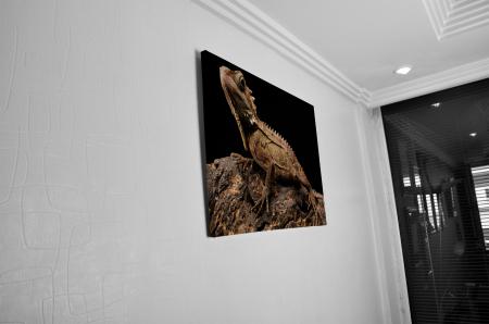 Tablou Canvas - Iguana [4]