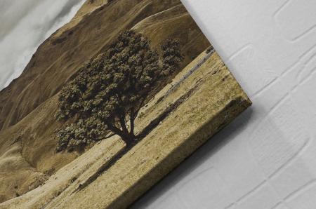 Tablou Canvas - One Tree [1]