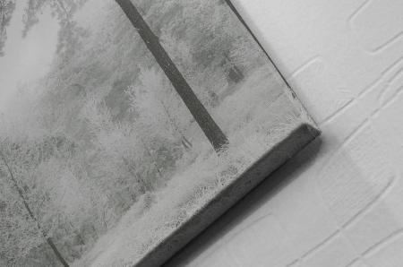 Tablou Canvas - Winter view [1]
