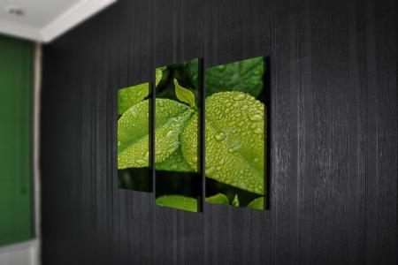 Tablou Multi-Canvas Green Leaves [2]