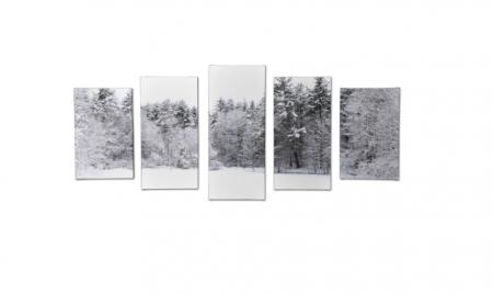 Tablou Multi-Canvas Winter View [0]