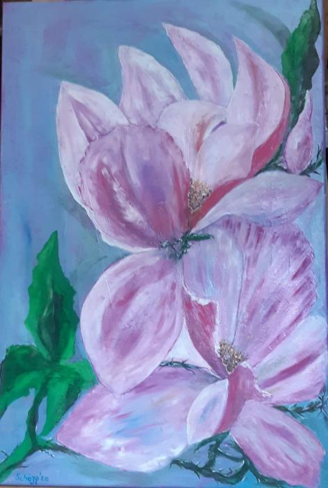 Magnolia 0