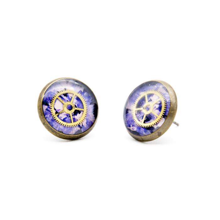 Cercei Surub - Multicolor Roz / Bleu 2