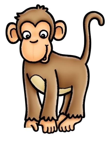 Joc educativ Cheeky Monkeys 5