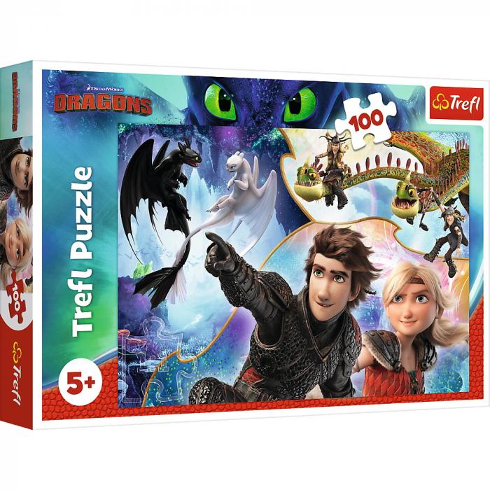 Puzzle Trefl 100 pe tarmul dragonilor [0]