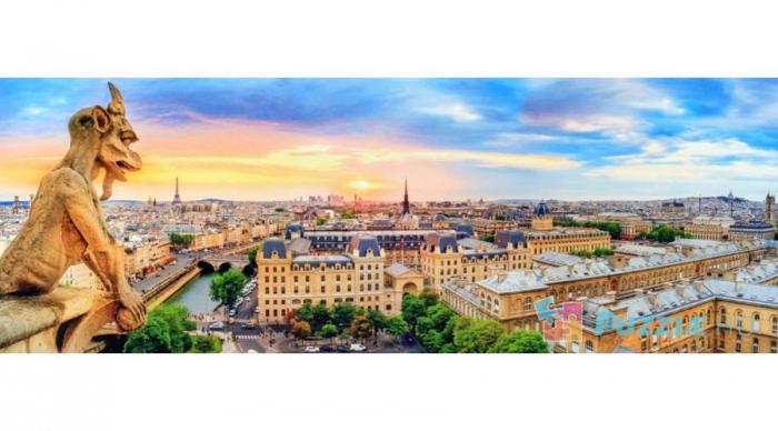 Puzzle Trefl 1000 Panorama de pe catedrala Notre Dame Paris [0]