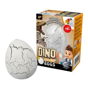 Oul magic Dino [1]