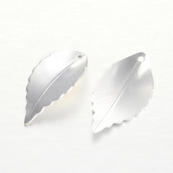 frunze-din-alama-argintii 0