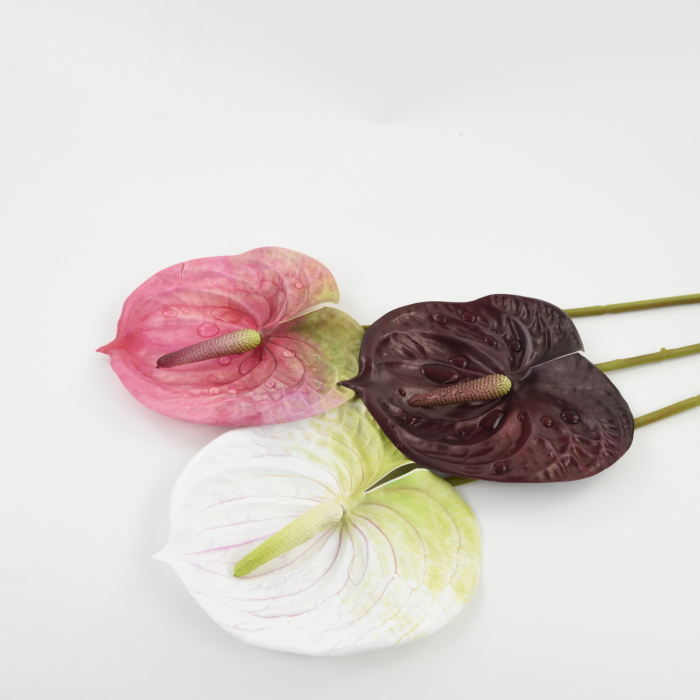 ANTHURIUM REAL TOUCH 1