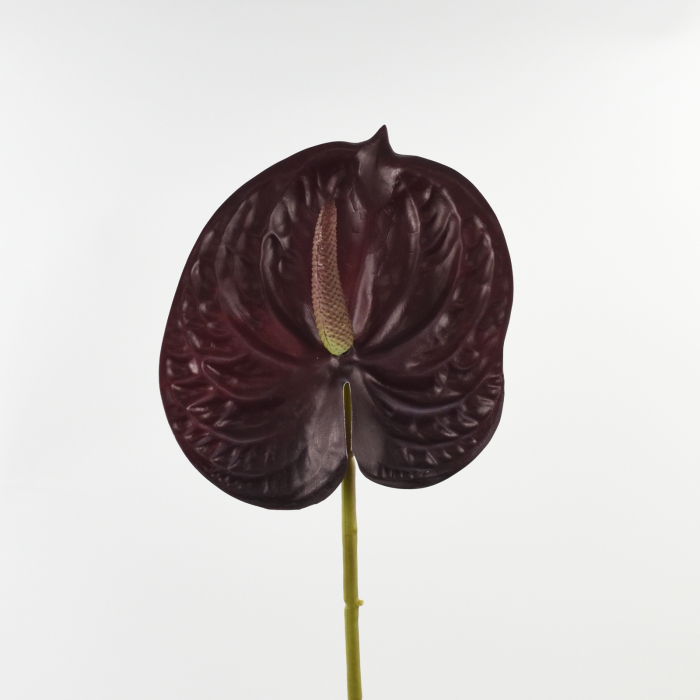 ANTHURIUM REAL TOUCH 0