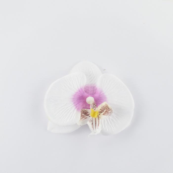 CAP ORHIDEE PHALAENOPSIS [0]