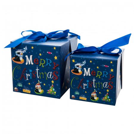 "SET 2 CUTII "" CHRISTMAS SURPRISE BOX"" [0]"