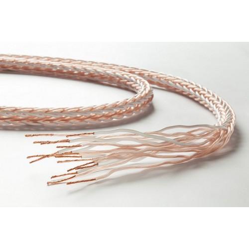 Cablu de boxe la metru Taga Harmony Platinum 18-16C 1