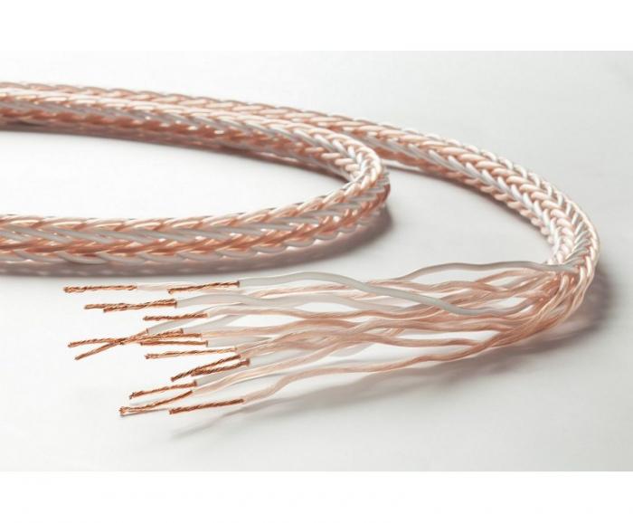 Cablu de boxe Taga Harmony Platinum 18-16C 2