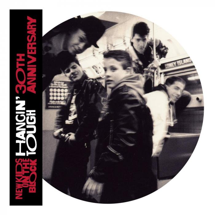 Vinil New Kids On The Block (NKOTB)-Hangin' Tough (30th Anniversary Picture Disc Edition)-2LP 0