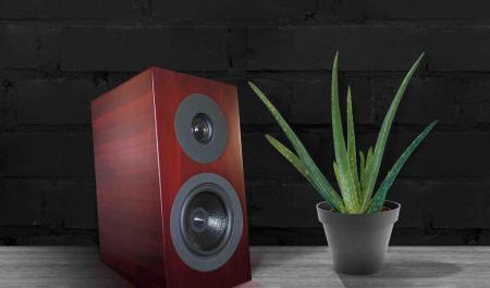 Boxe Davis Acoustics Courbet N 3