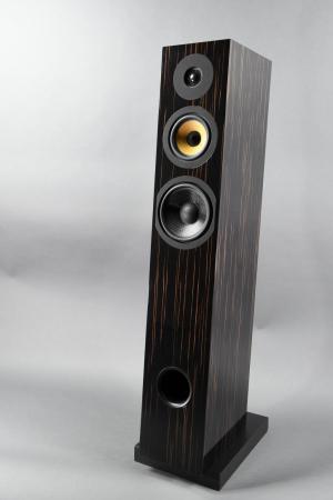 Boxe Davis Acoustics Courbet N 7