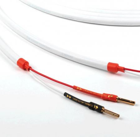 Cablu de Boxe Chord C-screen [1]