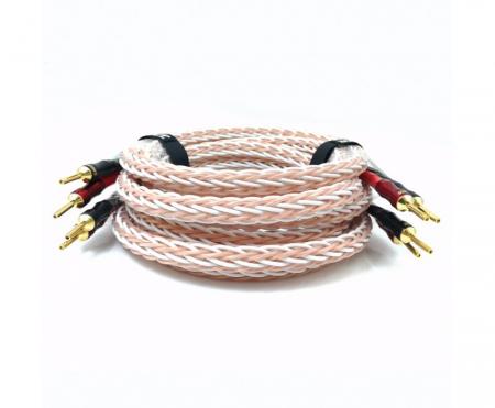 Cablu de boxe Taga Harmony Platinum 18-16C1