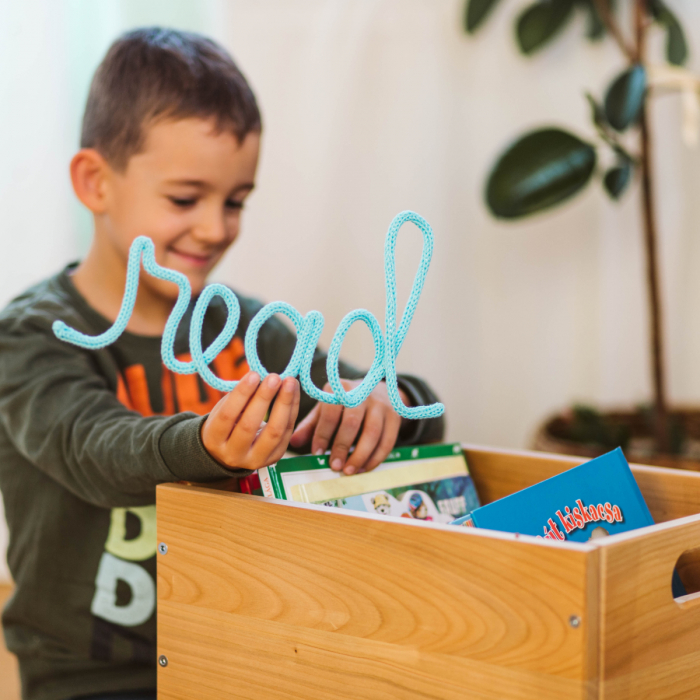 Cutie depozitare jucării / Lemn masiv 2