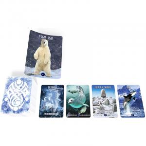 Inuit: The Snow Folk4