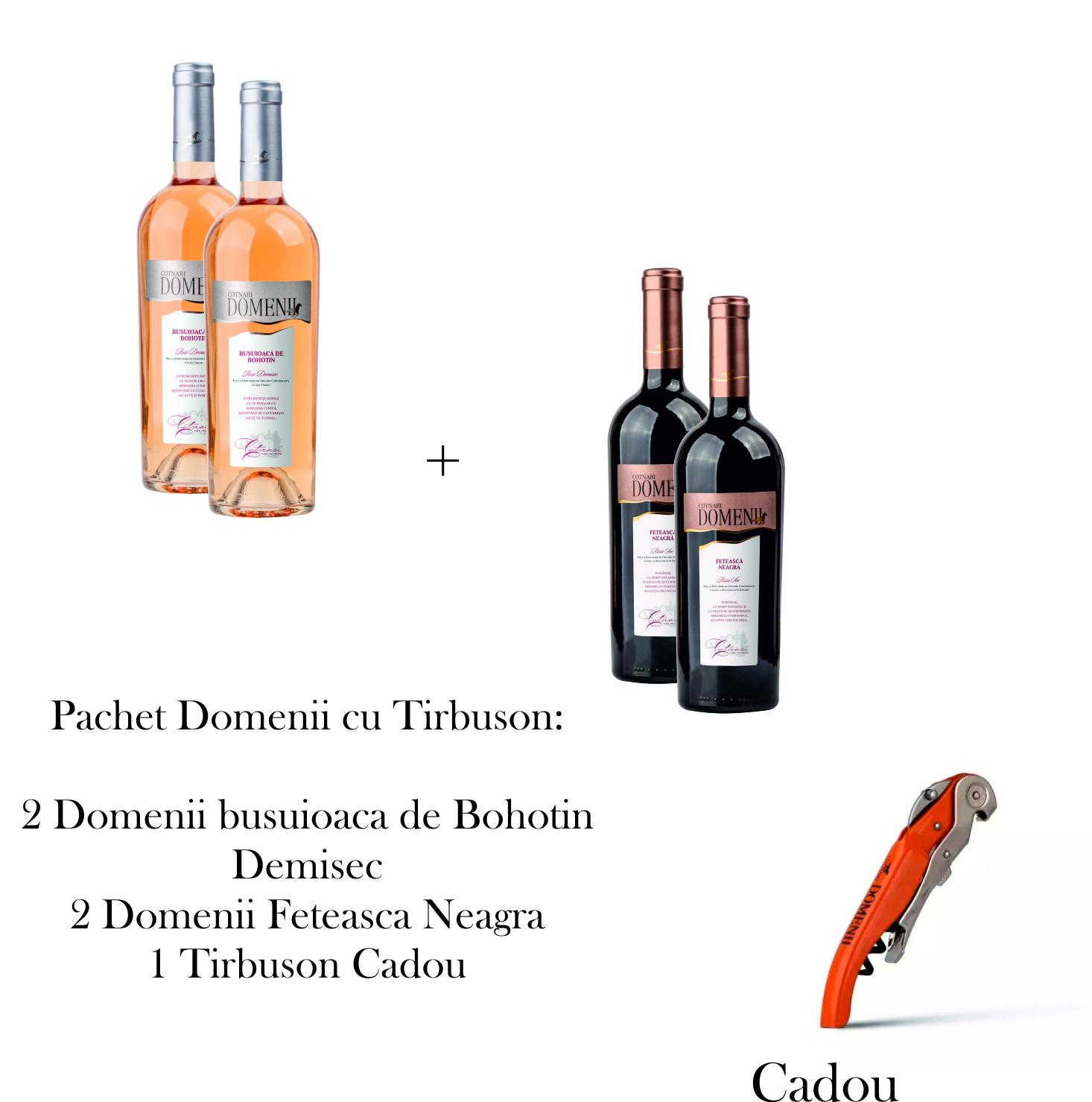 PACHET DOMENII CU TIRBUSON
