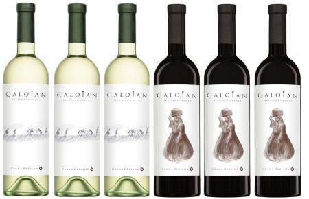 Caloian  Promo Bax 6  Sticle, Crama Oprisor1