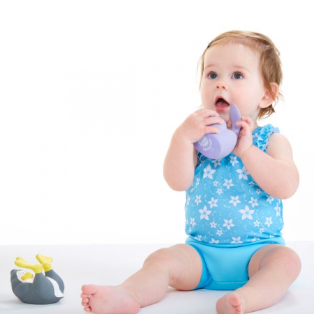 Jucarie de apă bebeluşi - Splash Pals Focă1
