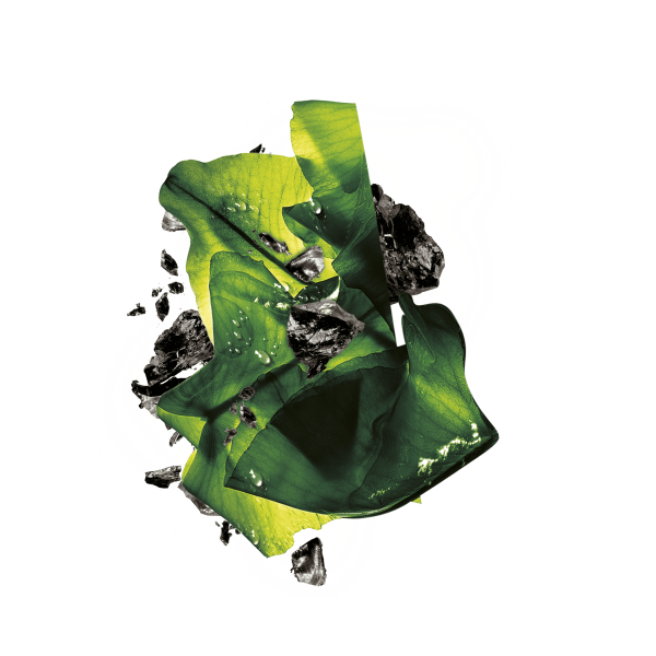 Masca servetel cu alge negre pentru purificare, Pure Charcoal Skin Naturals - 28 g 1