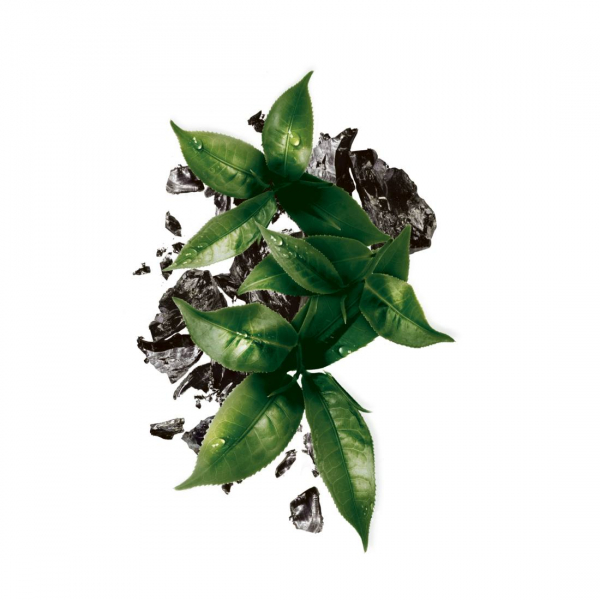 Pachet 5x Masca servetel Garnier Pure Charcoal cu ceai negru, pentru matifiere 2