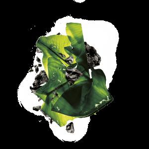 Masca servetel cu alge negre pentru purificare, Pure Charcoal Skin Naturals - 28 g1