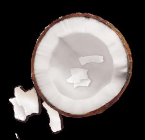 Masca hranitoare pentru par uscat lipsit de suplete, Garneir Milk Mask Coconut cu textura lejera de lapte , 250ml3