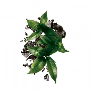 Pachet 5x Masca servetel Garnier Pure Charcoal cu ceai negru, pentru matifiere [2]