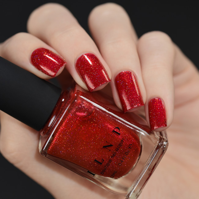 ILNP Stopping Traffic 2