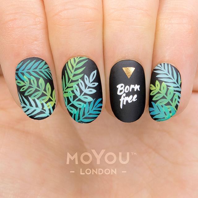 MoYou Tropical 36 1