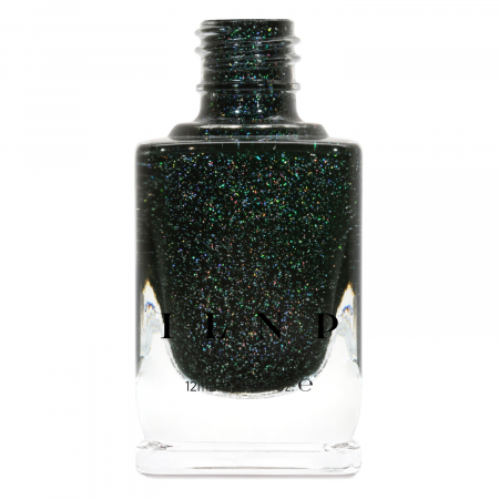 ILNP Holly0