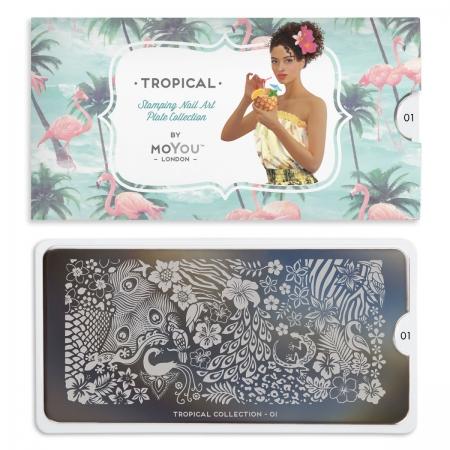 MoYou Tropical 011