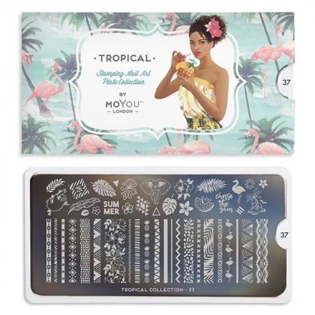 MoYou Tropical 371