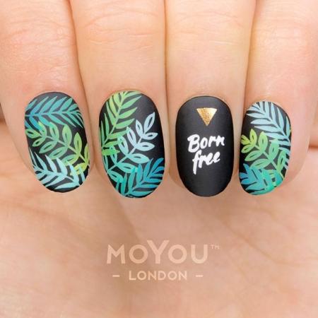 MoYou Tropical 361