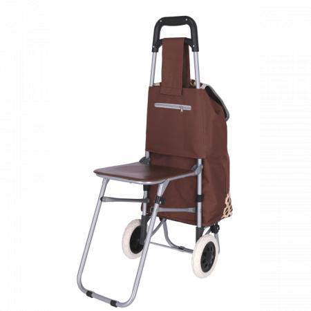 Carucior pentru cumparaturi , cu scaunel , Grunberg BF210 [2]