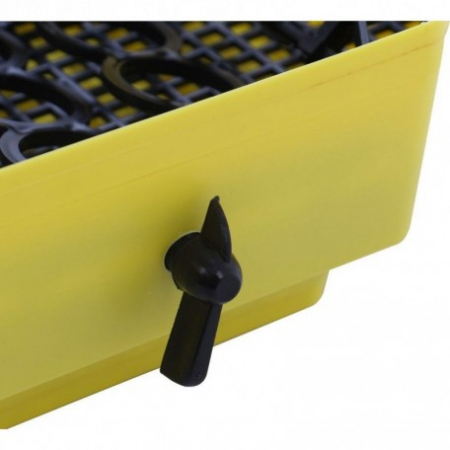 Incubator electric pentru oua, Cleo 5DT, cu dispozitiv intoarcere, termometru, 36 oua [2]