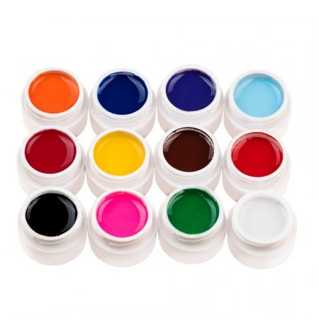Set 12 geluri UV Color ENS PRO Magic Nails + CADOU [0]