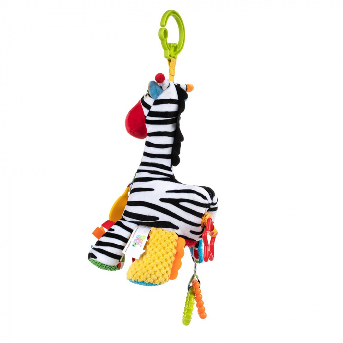 Zebra Zoya, 0 luni + 2