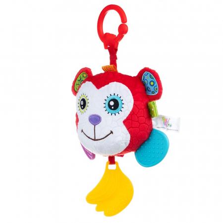 Maimuțica Aga, 0 luni +1