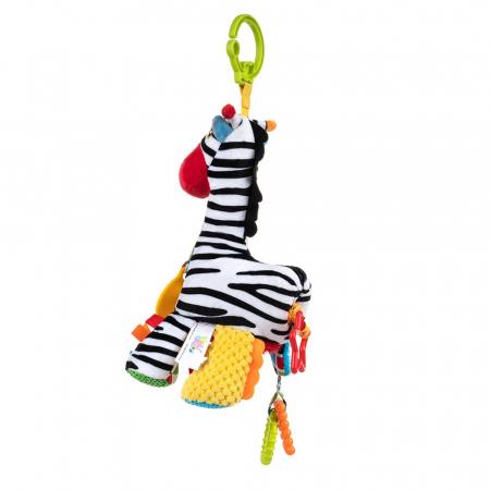 Zebra Zoya, 0 luni +2