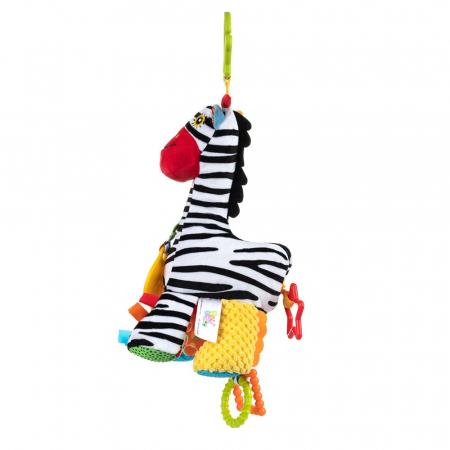 Zebra Zoya, 0 luni +1